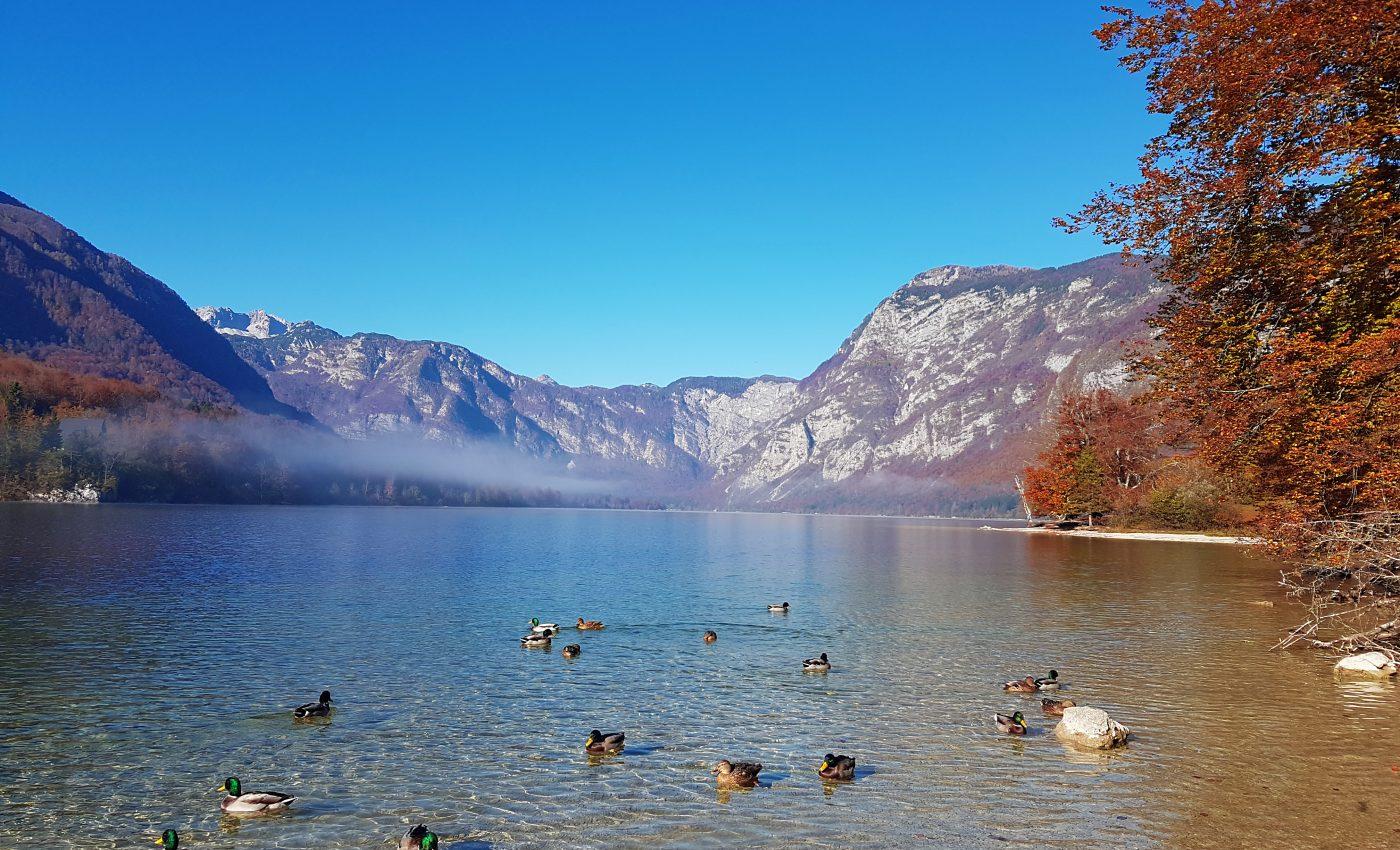 אגם בוהיני