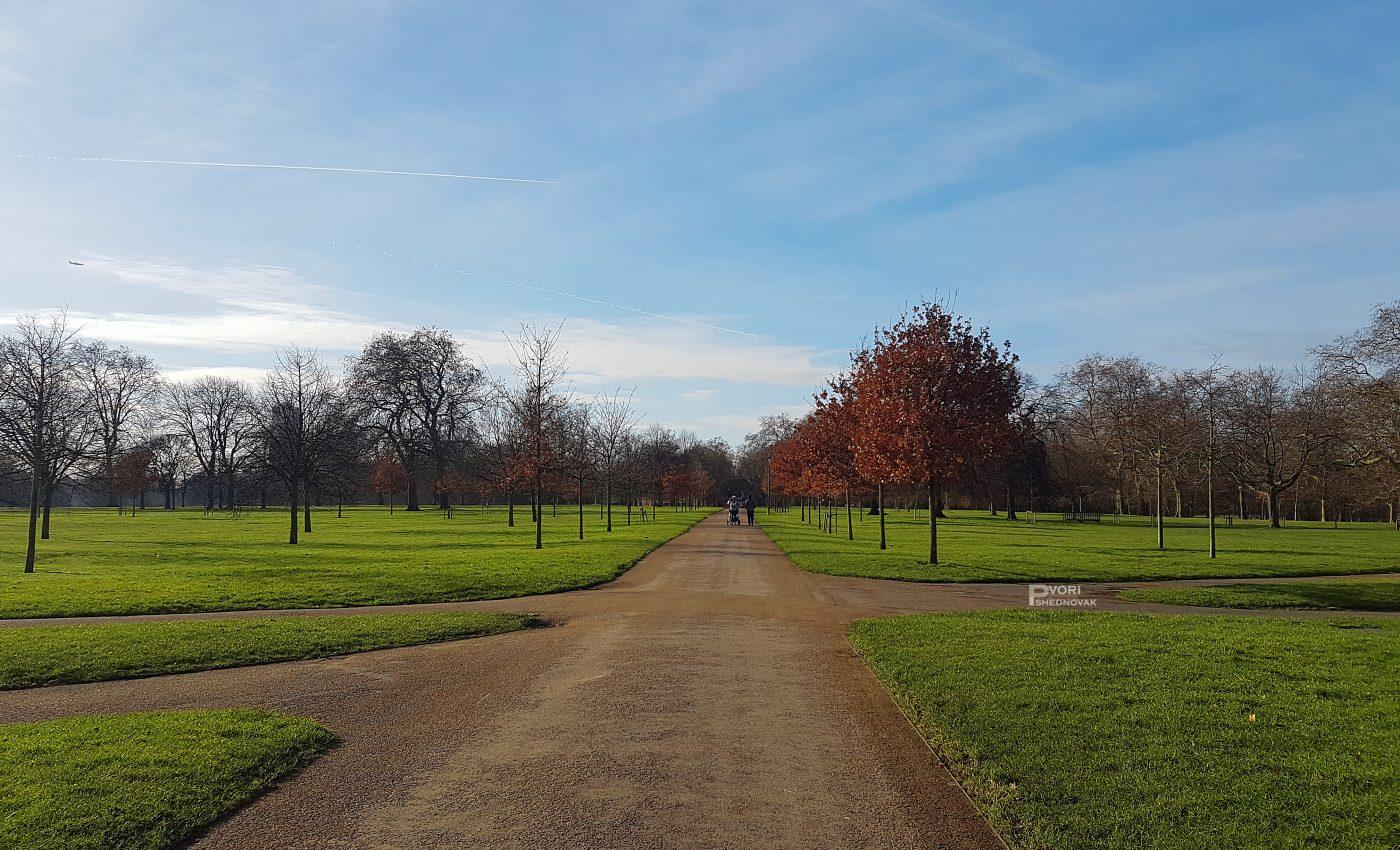 הייד פארק - שמיים כחולים ודשא ירוק
