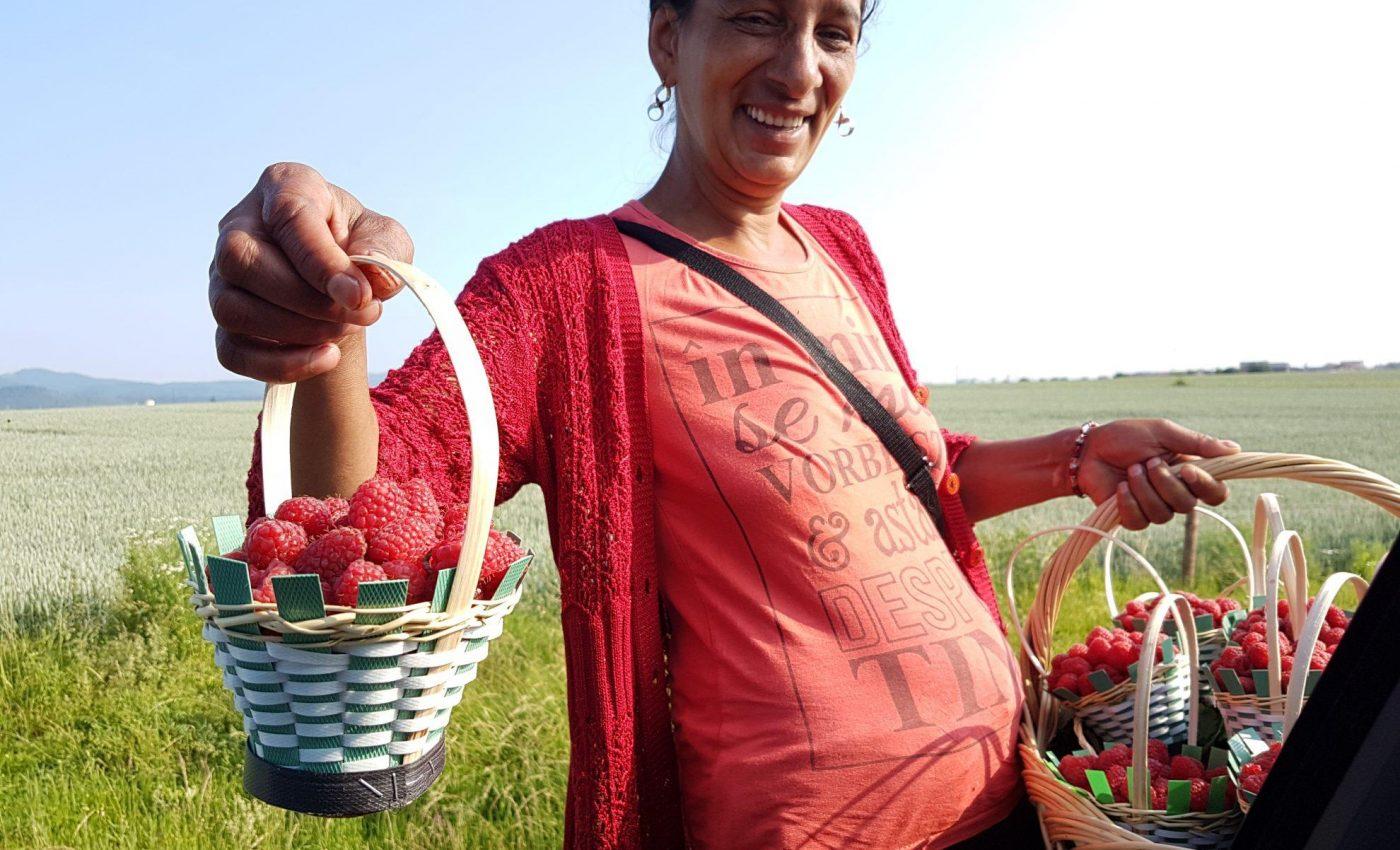 מוכרת פירות טריים ברמזור