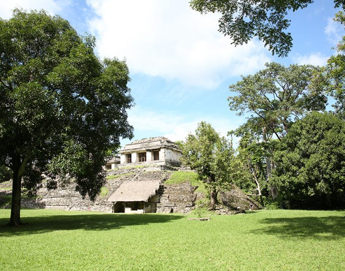 מקסיקו סן קריסטובל 426