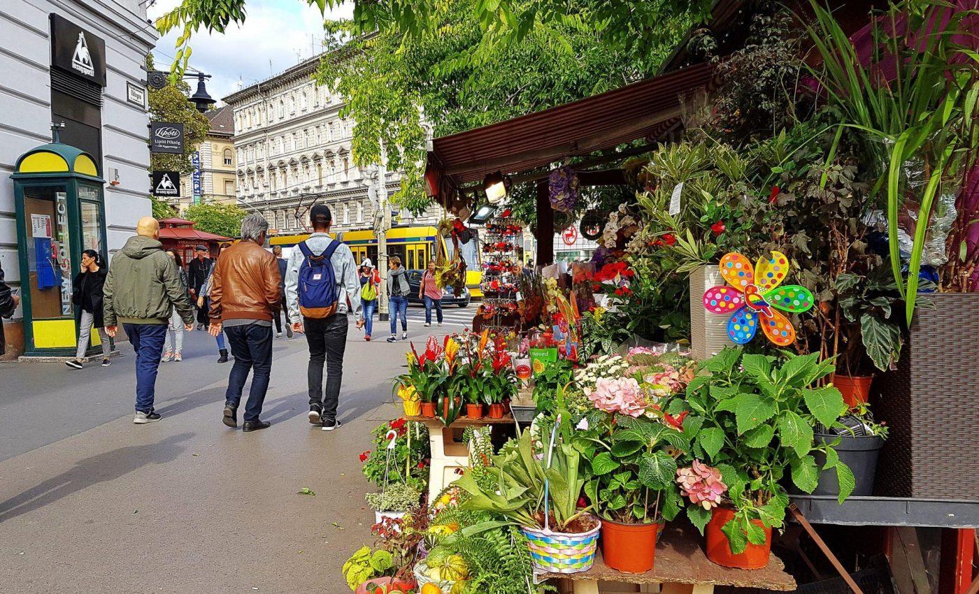 ברחובות בודפשט