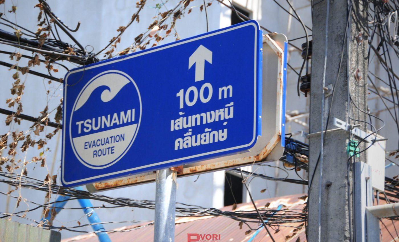 שלט שמורה לאיזה כיוון לברוח במקרה של צונאמי