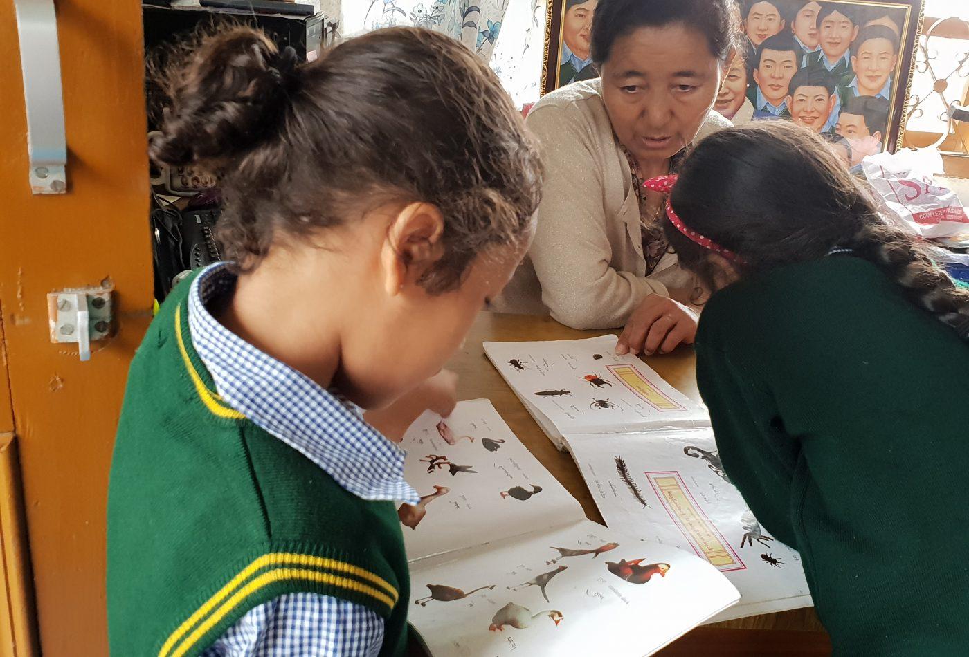 שיעור ספריה בבית היתומים הטיבטי