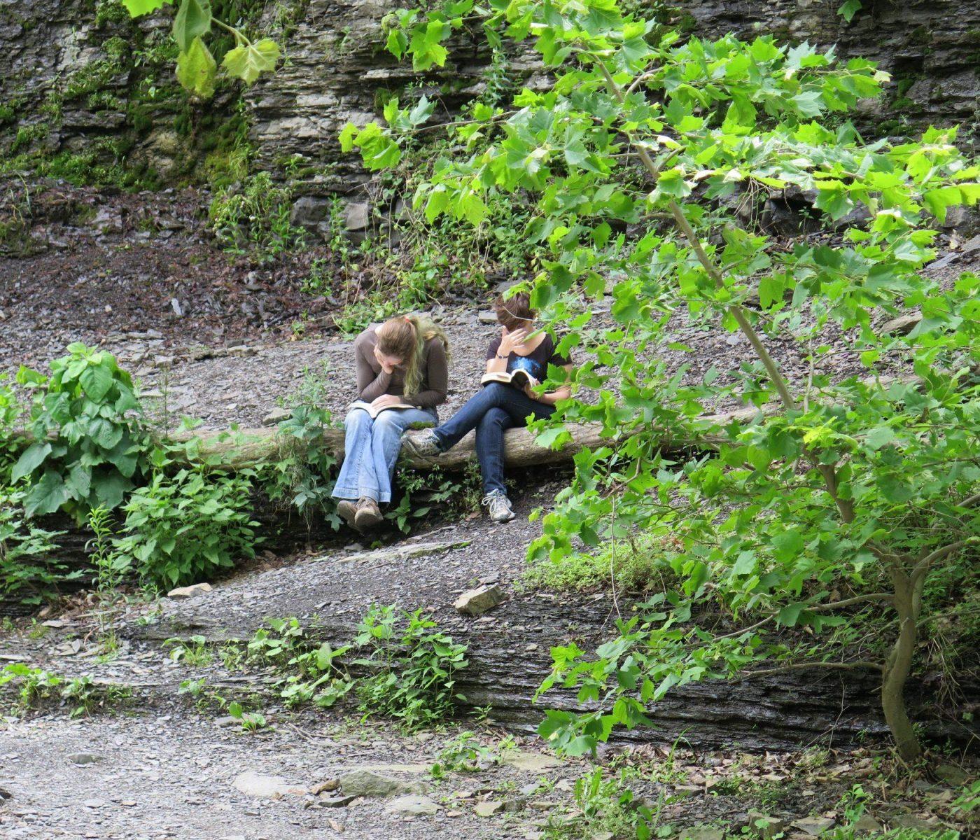 בנות לומדות ליד המפל