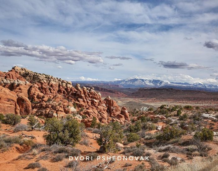 PANORAMA POINT VIEW ARCHES