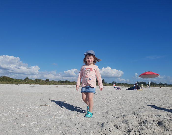חוף הצדפים באי סאניבל פלורידה