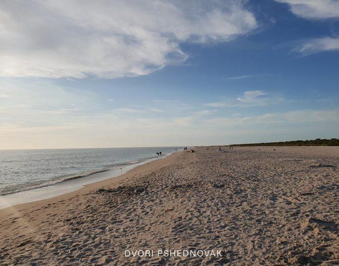 חוף סאניבל