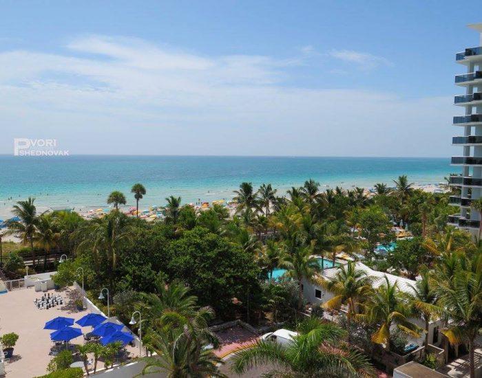 בוקר במיאמי. הנוף מחדר המלון!