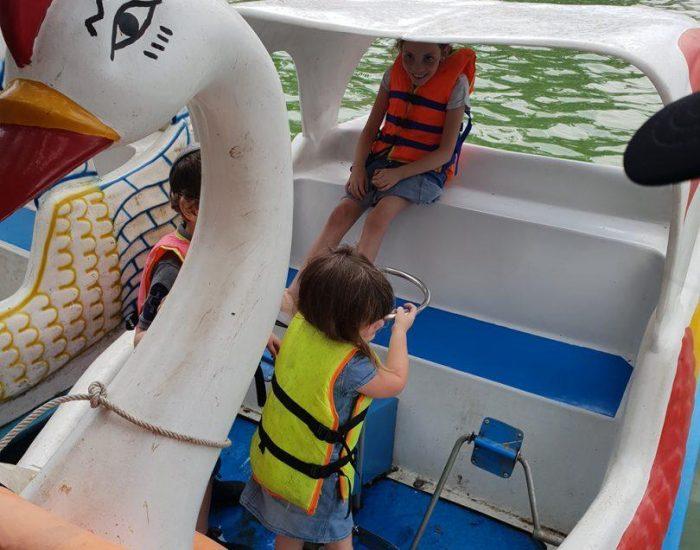 שייט בספינת ברבור