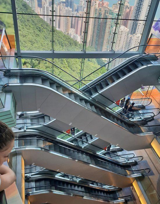 עולים במדרגות נעות לתצפית