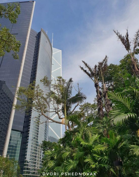 פארק הונג קונג
