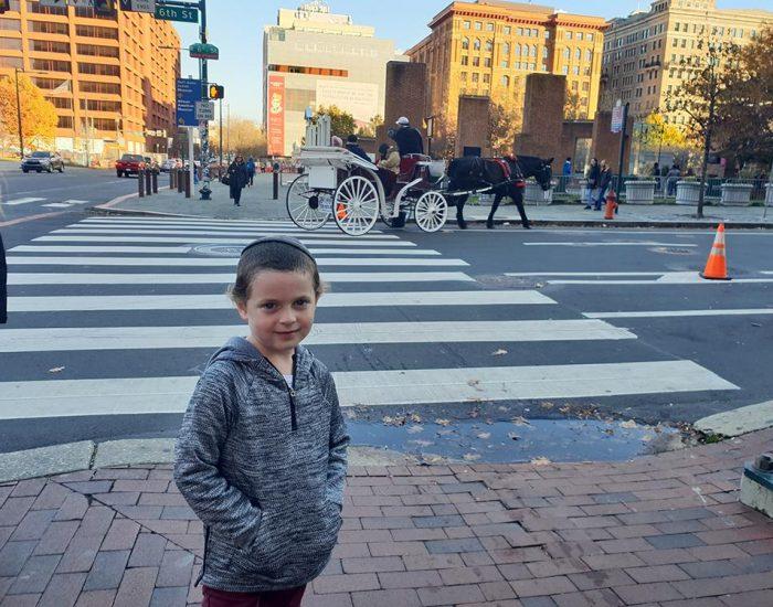 כרכרות סוסים ברחובות פילידלפיה