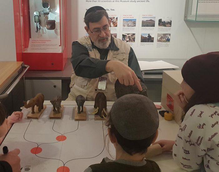 מוזיאון הטבע בוושינגטון חינם עם ילדים
