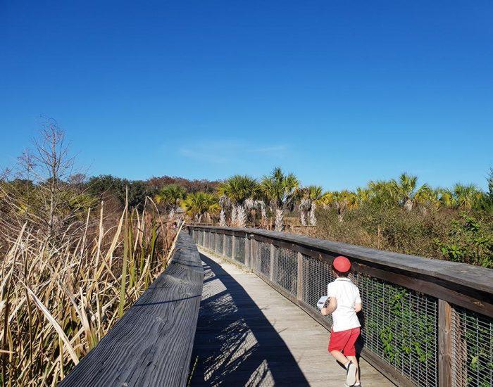 שמורת טבע בפלורידה פארק לאומי