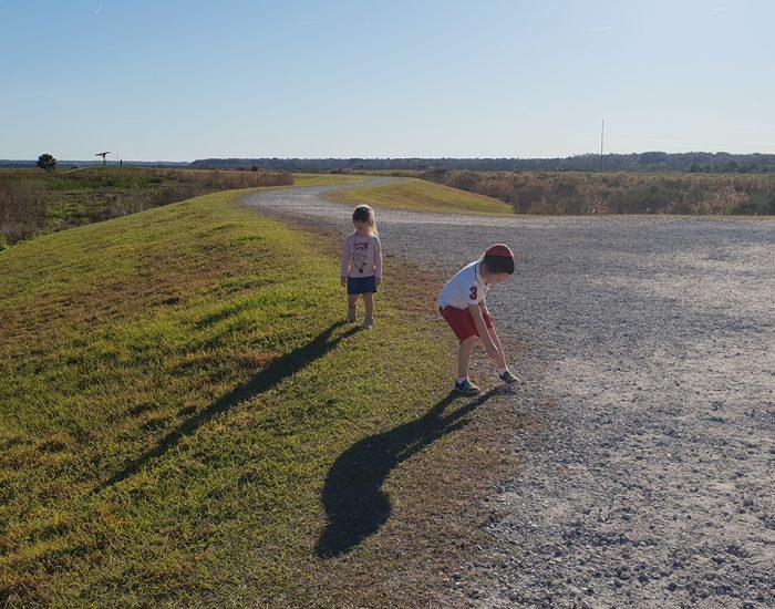 שמורת טבע בפלורידה פארק לאומי ילדים משחקים