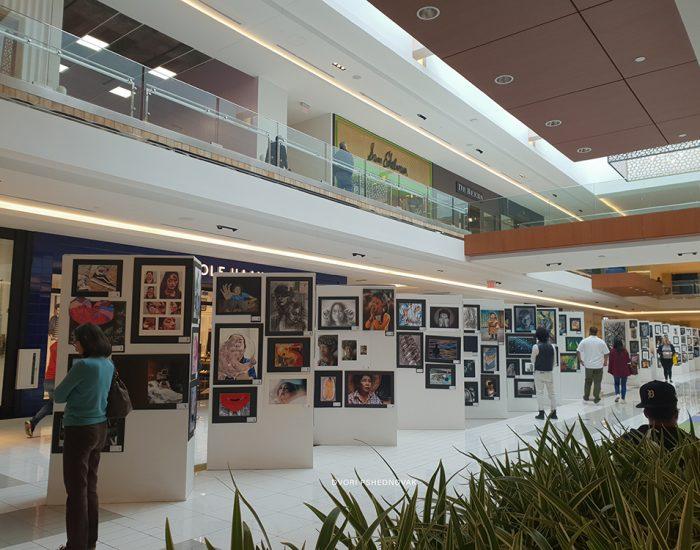 תערוכת צילומים וציורים בקניון בטקסס