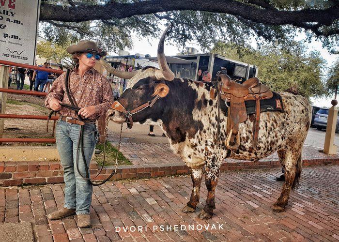 המערב הפרוע בטקסס