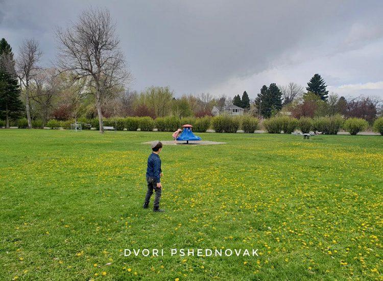 יהונתן בפארק