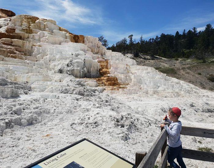 יהונתן בmammoth hot springs
