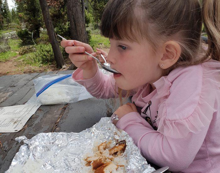 ארוחת צהריים בפארק ילוסטון