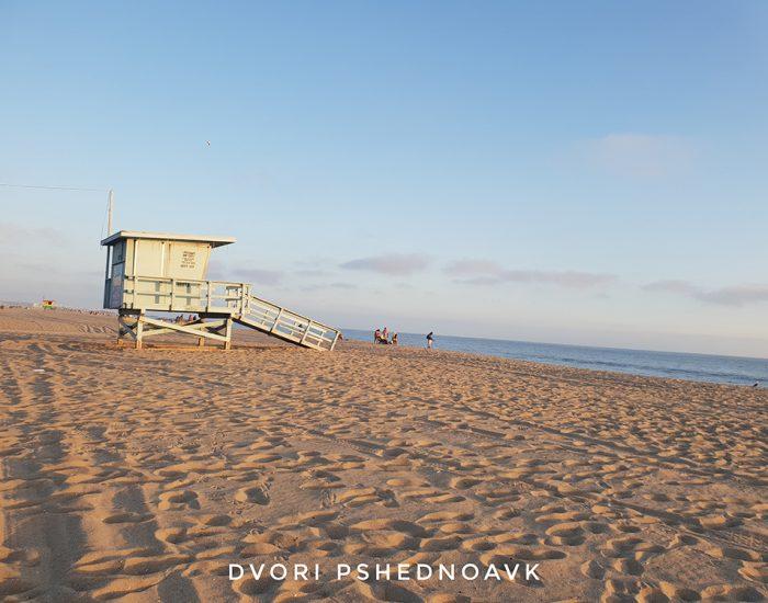 חוף וניס ביץ