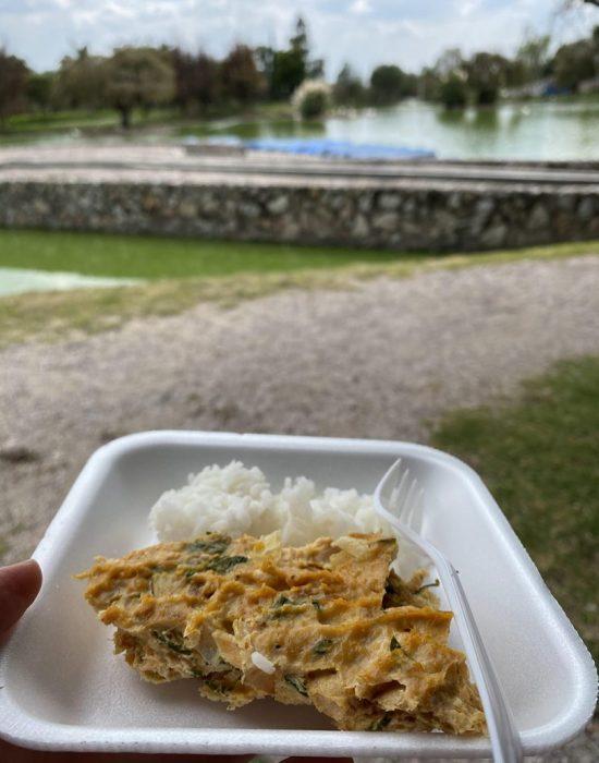 ארוחת צהריים בפארק, הברווזים עפו על הפשטידה...