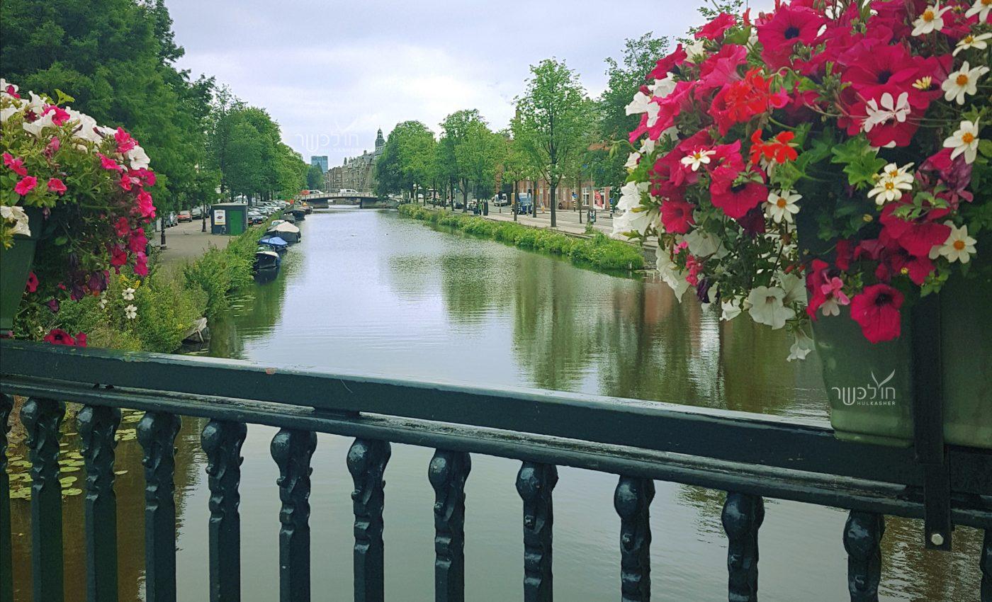 היופי של אמסטרדם