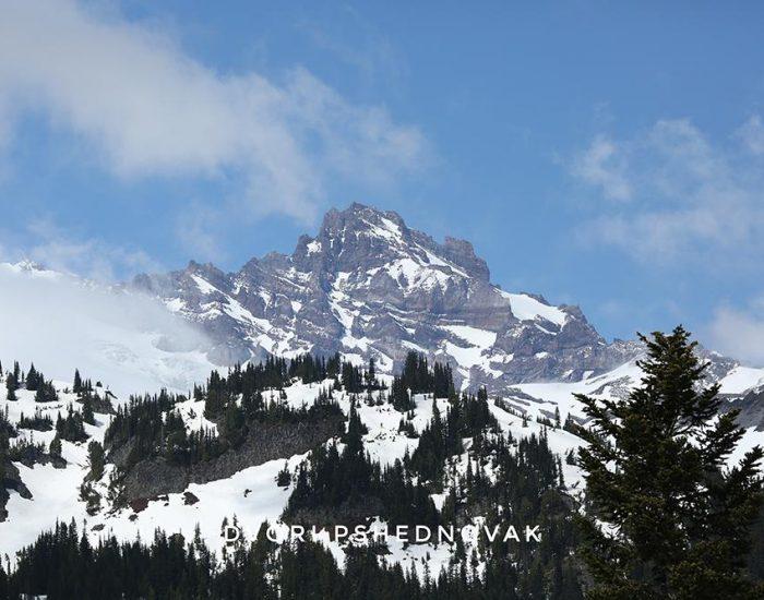 הר רייניר Mount Rainier