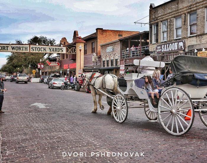 כרכרות סוסים בסטוקיארד בפורט וורת'