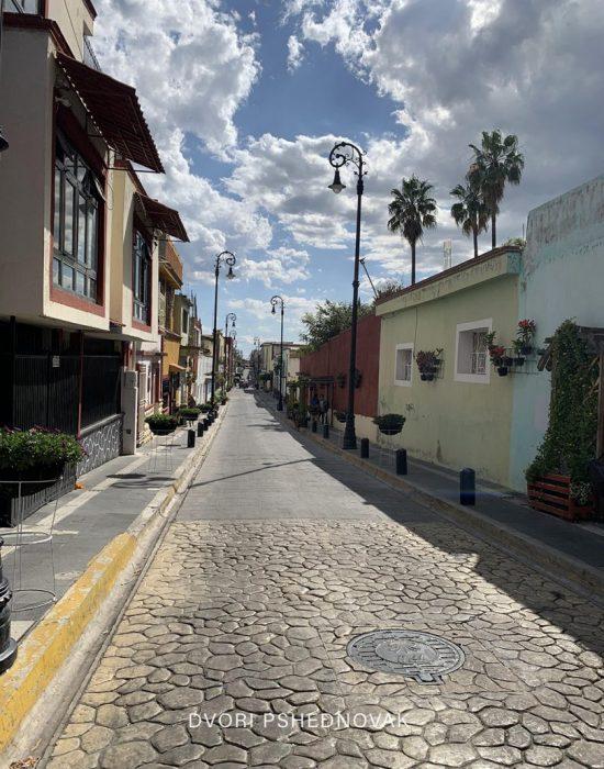 PUEBLA MEXICO חול כשר דבורי פשדנובק (122)